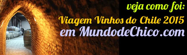 Logo para MDC - JPG - Vinhos do Chile 2015 - Veja como foi